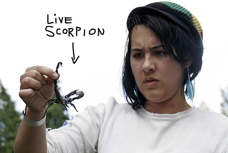 Millerama_scorpion